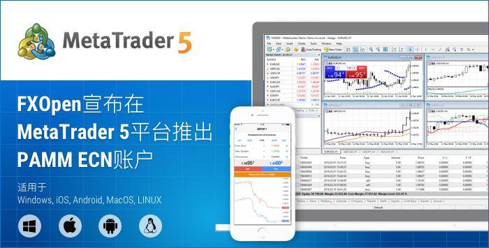 FXOpen宣布在MetaTrader 5平台推出PAMM ECN账户